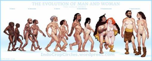 evolution-final